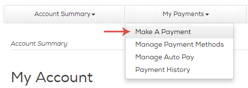 Click My Payments near the top of the screen, then click Make a Payment.