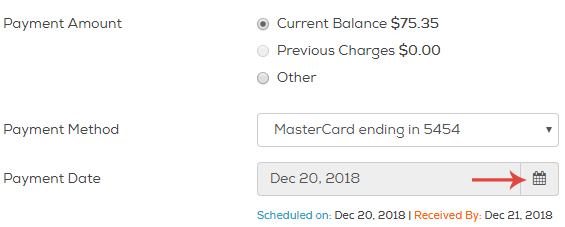 Click the calendar icon to the right of Payment Date and click the date you'd like to make your payment.